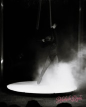 Fuego Carnal 2017